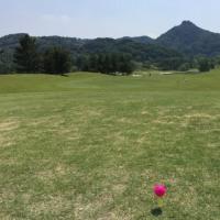 昨日は月一ゴルフ
