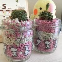 お花と ちょこぼ
