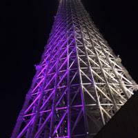 東京スカイツリー恋のつぶや木