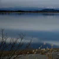 広い渡良瀬遊水地は、もう一度