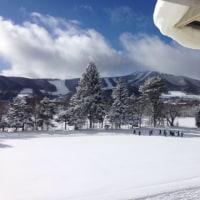 大雪です⛄️😱