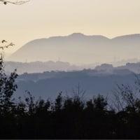 24/Oct 朝焼けと霧の湘南平とカワセミの里