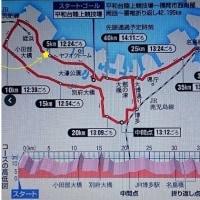✿福岡国際マラソン選手権大会2016
