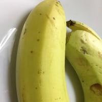 バナナ園&お庭見学#島バナナ#趣味の農業