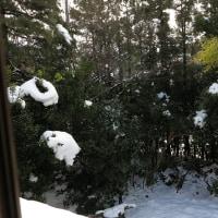 今日は晴れ。時間を遡って、空と雪景色、1月17日。