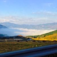 朝霧でした