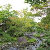 初秋の昭和記念公園