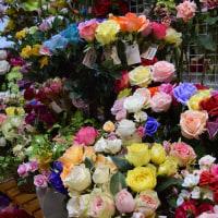 アートフラワーのバラも、種類豊富にそろえました。