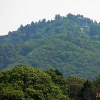 暑かったが、日陰では涼しい風もあり、山歩き日和に誘われて高代寺・獣舎の見回りをして来ました。