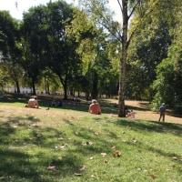 早くも秋の気配 ロンドン セントジェームス公園