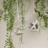 ガーデン風のインテリア、ディスプレイにお勧めのつりさげるタイプのフェイクグリーンです。