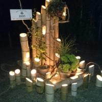和歌山城 竹燈夜 2016