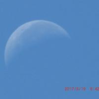 朝、青空の中に月をみつける