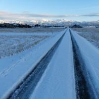 今日も冷え込んで、北アルプスの山並みはスッポトライトを浴びて美しかった
