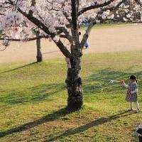 ひとり写真教室 石ケ谷公園および東二見人口島