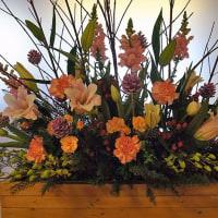 20161217の花