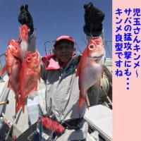 4/23の釣果