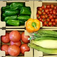 沖縄産直「野菜屋 元」さんの野菜が届きました♪