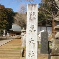 千葉県東庄町、大東社の大杉2本とケヤキです!!