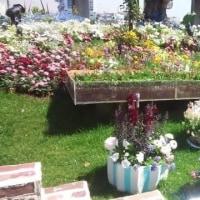全国都市緑化よこはまフェア(6月4日まで)