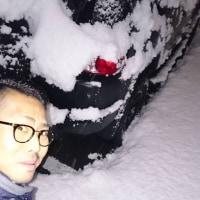 雪降りすぎ!