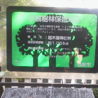 越木(甑)岩神社