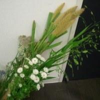 今日の花材☆ミ