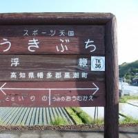 TK36浮鞭(高知県)うきぶち