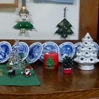 クリスマスツリー登場♪