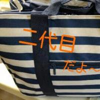 二代目、お買い物保冷バッグ♪