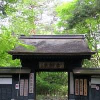 金沢の春2017 金沢市内 大乗寺、久安、有松
