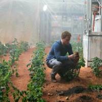 火星に似た環境でもジャガイモ育つようですよ