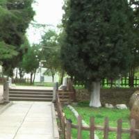 トルコ一周とカッパドキアの旅(トロイ遺跡)