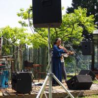Sing Bird Concert 2015