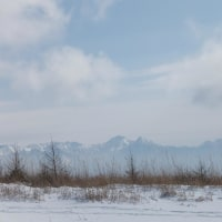 霧ヶ峰でスノーシュー