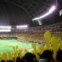 福岡ソフトバンクホークス VS 埼玉西武