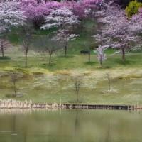県立植物園