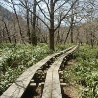 六百山・霞沢岳・ウエストン碑