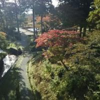 水源地公園で🍂