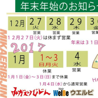 みかえりびじんオリジナル手帳!!
