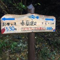 うっかり雪山@丹沢