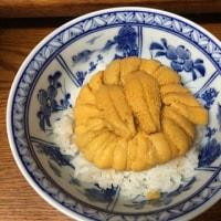 恒例のウニ丼 2017初夏