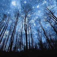 聖書の言葉: 「星を数えて」とアイデンティティ