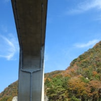 神戸市北区 イヤガ谷東尾根〜妙号岩北谷〜石井ダム