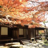 三溪園の秋 2