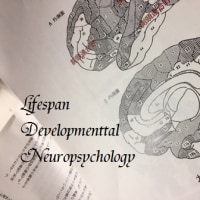 生涯発達と脳の心理学