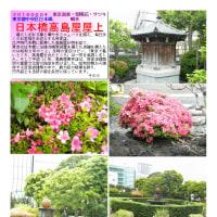 噴水・水-45 日本橋高島屋屋上