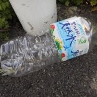 ペットボトル1本、収集 レジ袋でゴミ拾い&パトロール