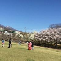 山の春、里の春