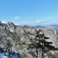 厳冬の 大崩山 登山 ~ 坊主尾根-三里川原 周回_大滝の氷瀑は お見事でした。